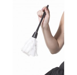 Sissy Maids Feather Duster